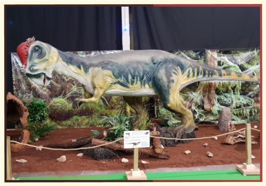exposicion-dinosaurios_01