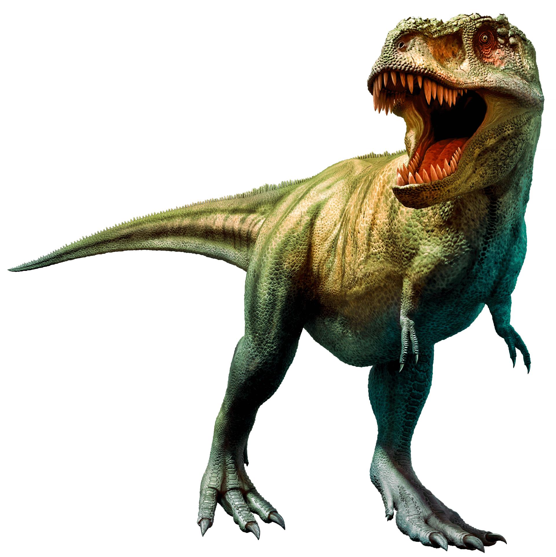 tiranosaurio-rex_large